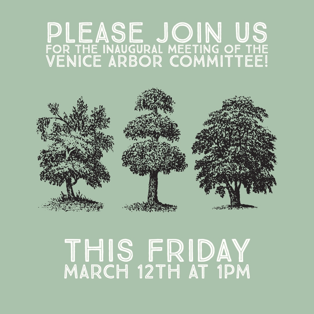 Venice Arbor Committee Meeting